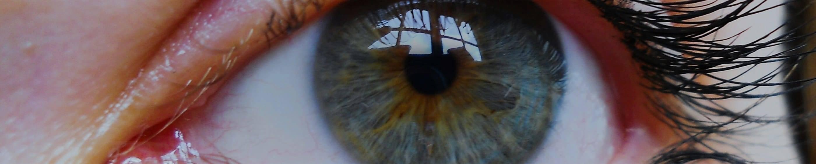 戴隱形眼鏡眼睛特寫